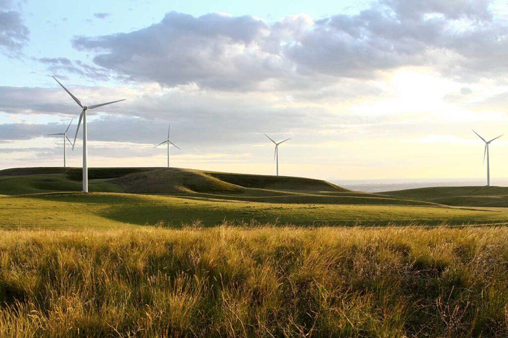 Red Gap Moor Wind Farm grid connection